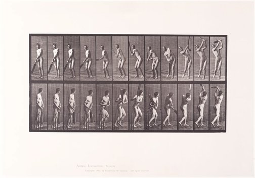 An image of Animal Locomotion - An Electrophotographic Investigation of Consecutive Phases of Animal Movements. Plate 291. Cricket, batting and drive [Vol. 2 Males (nude)] by Eadweard Muybridge