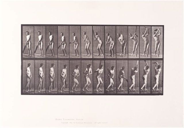 An image of Animal Locomotion - An Electrophotographic Investigation of Consecutive Phases of Animal Movements. Plate 291. Cricket, batting and drive [Vol. 2 Males (nude)]