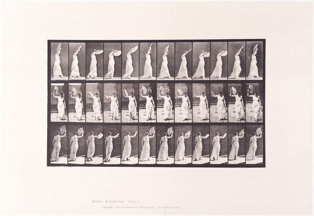 An image of Animal Locomotion - An Electrophotographic Investigation of Consecutive Phases of Animal Movements. Plate 41. Walking; flirting a fan [Vol. 6 Females (Semi-Nude & Transparent Drapery) & Children]