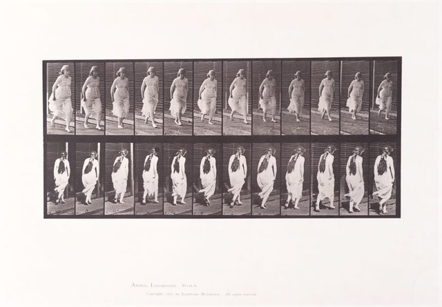 An image of Animal Locomotion - An Electrophotographic Investigation of Consecutive Phases of Animal Movements. Plate 71. Running [Vol. 6 Females (Semi-Nude & Transparent Drapery) & Children]
