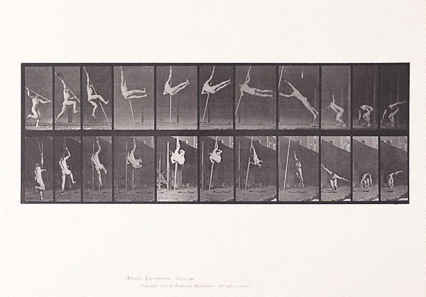 An image of Animal Locomotion - An Electrophotographic Investigation of Consecutive Phases of Animal Movements. Plate 164. Jumping and pole - vaulting [Vol. 1 Males (Nude)]