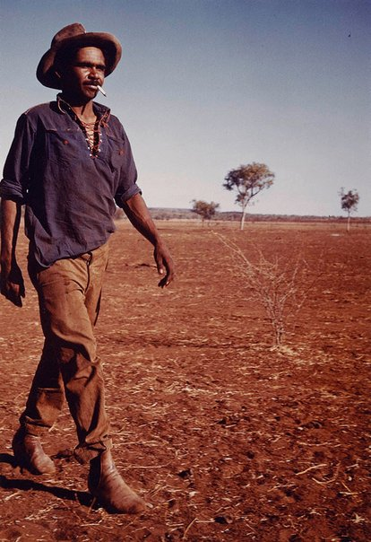 An image of Aboriginal stockman, Central Australia by Axel Poignant