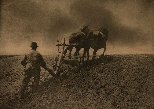 An image of A stiff pull by Peter Henry Emerson