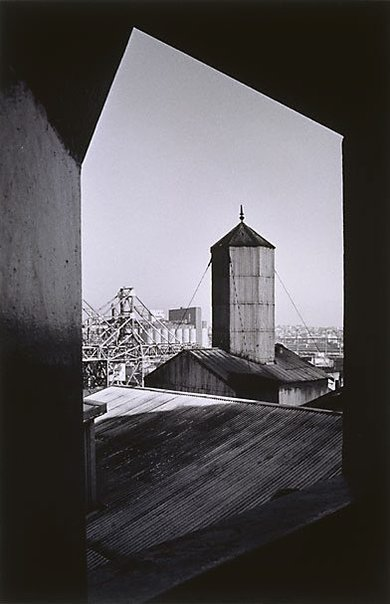 An image of Pyrmont Refinery roofscape by David Moore