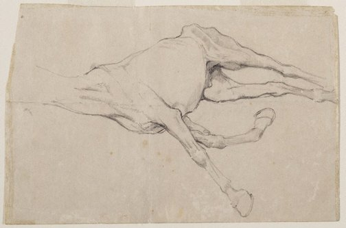 An image of Study of a dead(?) horse by Douglas Fry