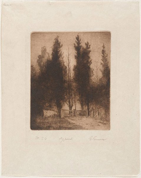 An image of The pines by Elioth Gruner