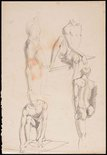 Alternate image of recto: Studies of a seated male nude in a loin cloth, London verso: Four studies of a male nude by Nora Heysen