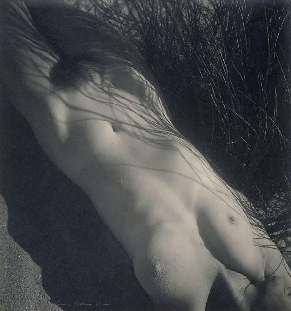 An image of Nude in grass