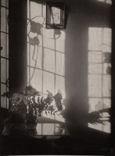An image of By my window by Olive Cotton