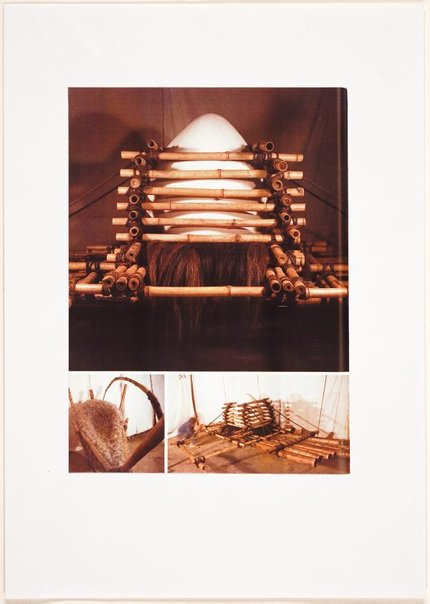 An image of Detail of Egg raft from catalogue of AGNSW installation by Ross Mellick, Unknown