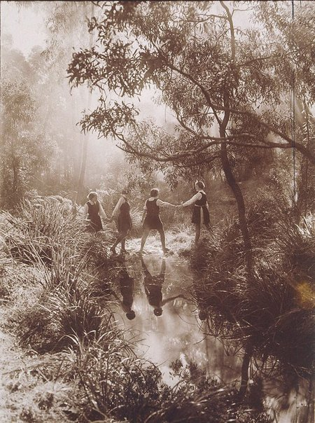 An image of The Crossing, Frensham School, Mittagong by Harold Cazneaux