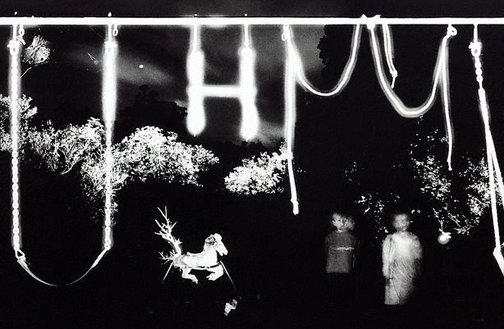 An image of Backyard swing set, QLD by Trent Parke