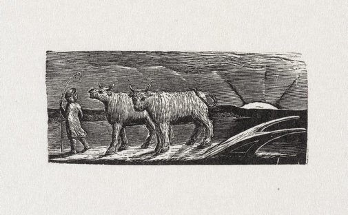 An image of Return of the shepherd by William Blake