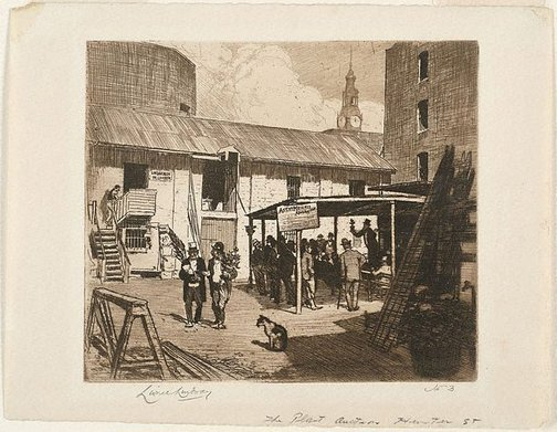 An image of Plant auction, Hunter St. by Lionel Lindsay