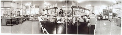 An image of Rhonda Romana in laboratory, Victoria Mill Ingham, North Queensland by John F Williams