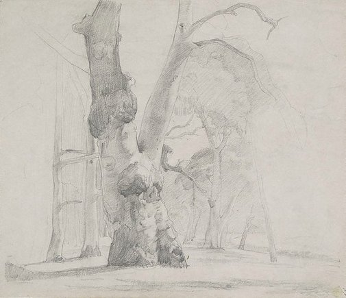 An image of (Old gum tree, The Cedars, Hahndorf) by Nora Heysen