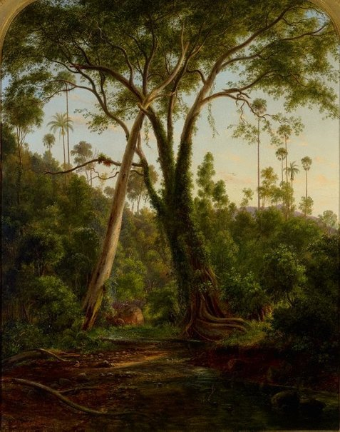 An image of A fig tree on American Creek near Wollongong, NSW by Eugene von Guérard
