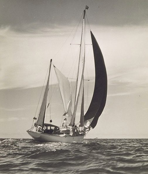 An image of The black sail by Henri Mallard
