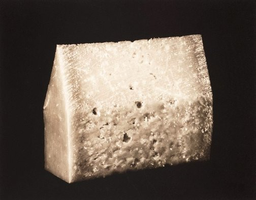 An image of The house of parmesan by Marie Shannon