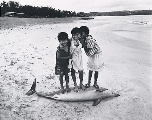 An image of Three girls on a deceased dolphin, Bali by Jon Lewis