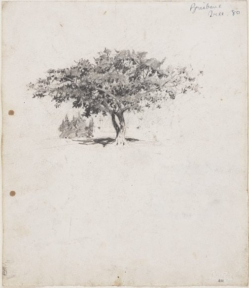 An image of recto: Moreton Bay fig at Milton verso: Bamboos at the back of Samford and Note of houses by Lloyd Rees