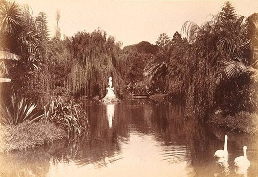 An image of Botanic Gardens, Sydney by William Livermore, Star Photo Co., Sydney