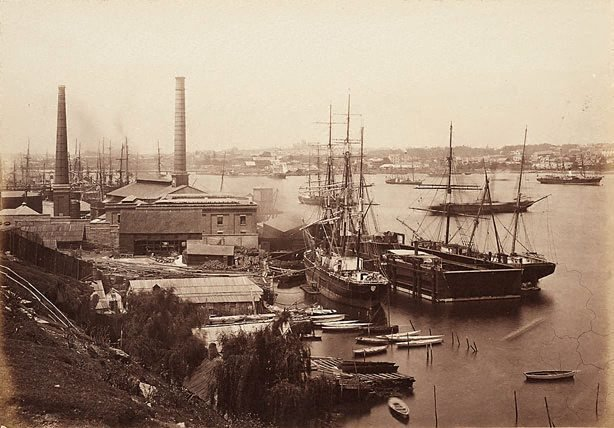 An image of Rowntree's floating dock with the ships Wentworth and Rachel, and Australian Gas Light Works in the background, Darling Harbour