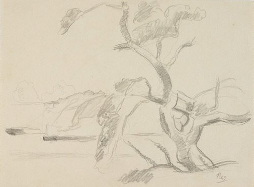 An image of (Tree study) by Roland Wakelin