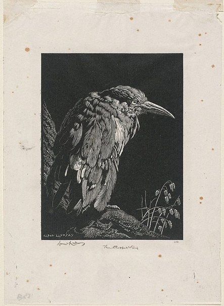 An image of Depression (The clipped wing) by Lionel Lindsay