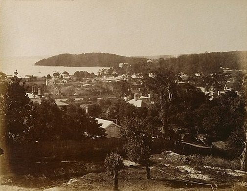 An image of Sydney scene, showing harbour and headland by Unknown