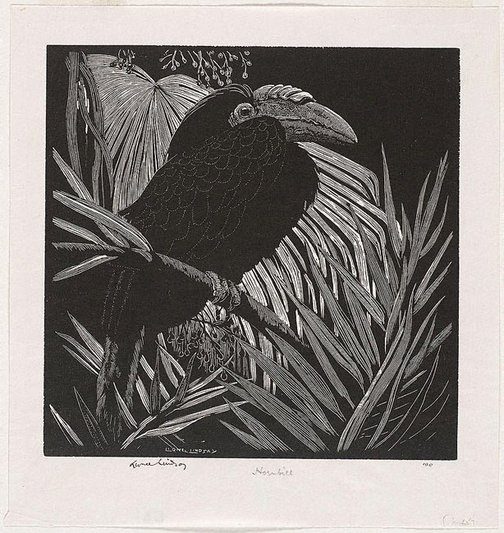 An image of Hornbill by Lionel Lindsay