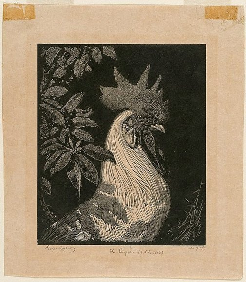 An image of The Emperor (The white cock) by Lionel Lindsay