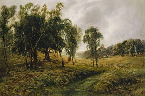 An image of Cannock Chase - When the sweet winds did gently kiss the trees, and they did make no noise by Bernard Evans