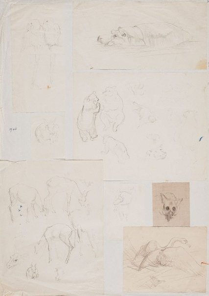 An image of (Album page with 8 sheets affixed, animal studies) by Mary Abbott