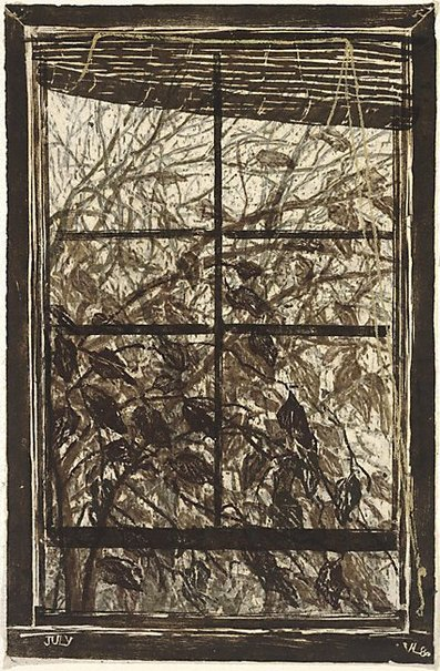 An image of Surrey Street window by Vivienne Littlejohn