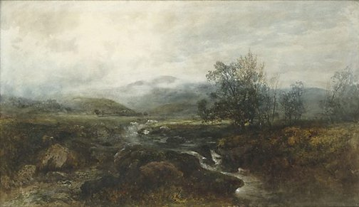 An image of The Mountain Stream by D Wadham