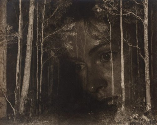 An image of Untitled (Surrealist face in woods) by Max Dupain
