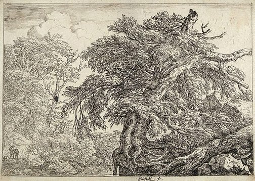 An image of The great beech, with two men and a dog by Jacob van Ruisdael
