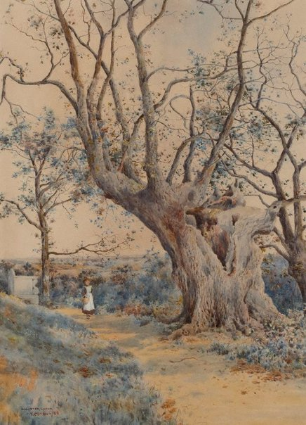 An image of Wilberforce oak by W Lister Lister