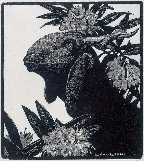 An image of Goat and rhododendron by Lionel Lindsay