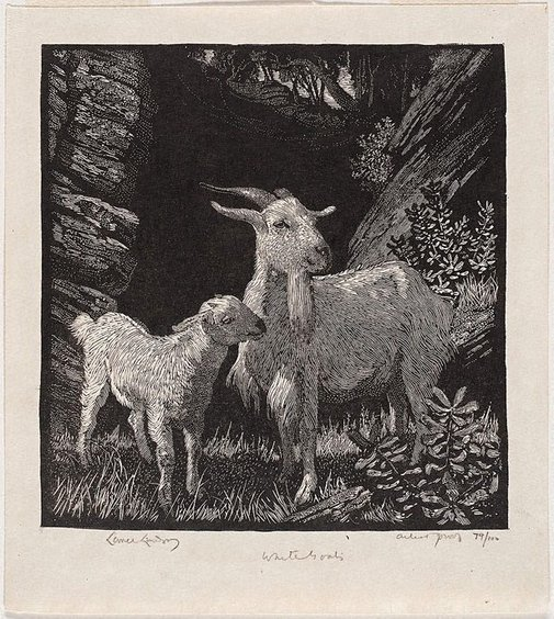 An image of White goats by Lionel Lindsay