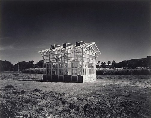 An image of Glasshouse in canefield, Queensland by Max Dupain