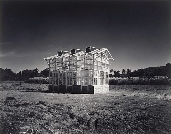 An image of Glasshouse in canefield, Queensland