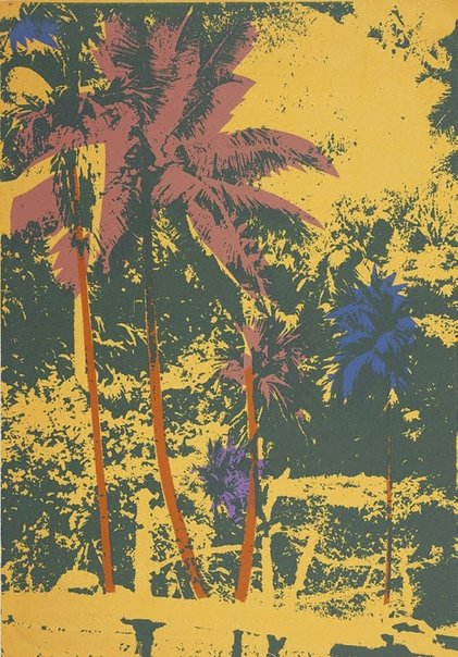 An image of Jungle near the Elephant Caves by Peter Upward
