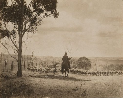 An image of Australian Stock Route (Berrima district) by Harold Cazneaux
