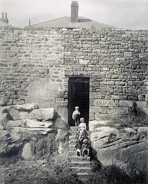 An image of Untitled (rear of house - Trinity Road) by Harold Cazneaux