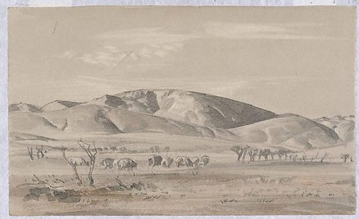 An image of In the Hawker country by Hans Heysen