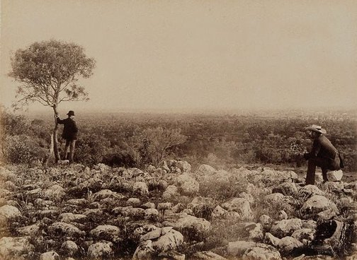 An image of View from Dunlop Range, near Louth, Darling River (looking south) by Charles Bayliss