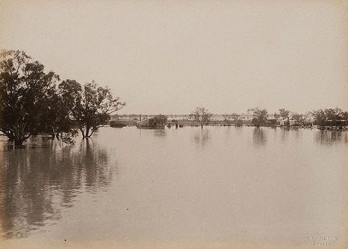 An image of Woolsheds Dunlop Station, Darling River (second view) by Charles Bayliss