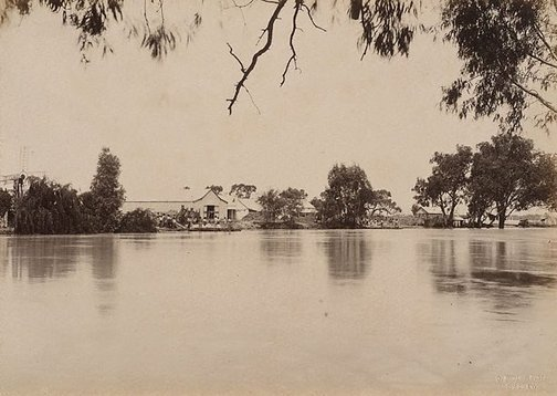 An image of Woolsheds, Moorara Station, Darling River by Charles Bayliss